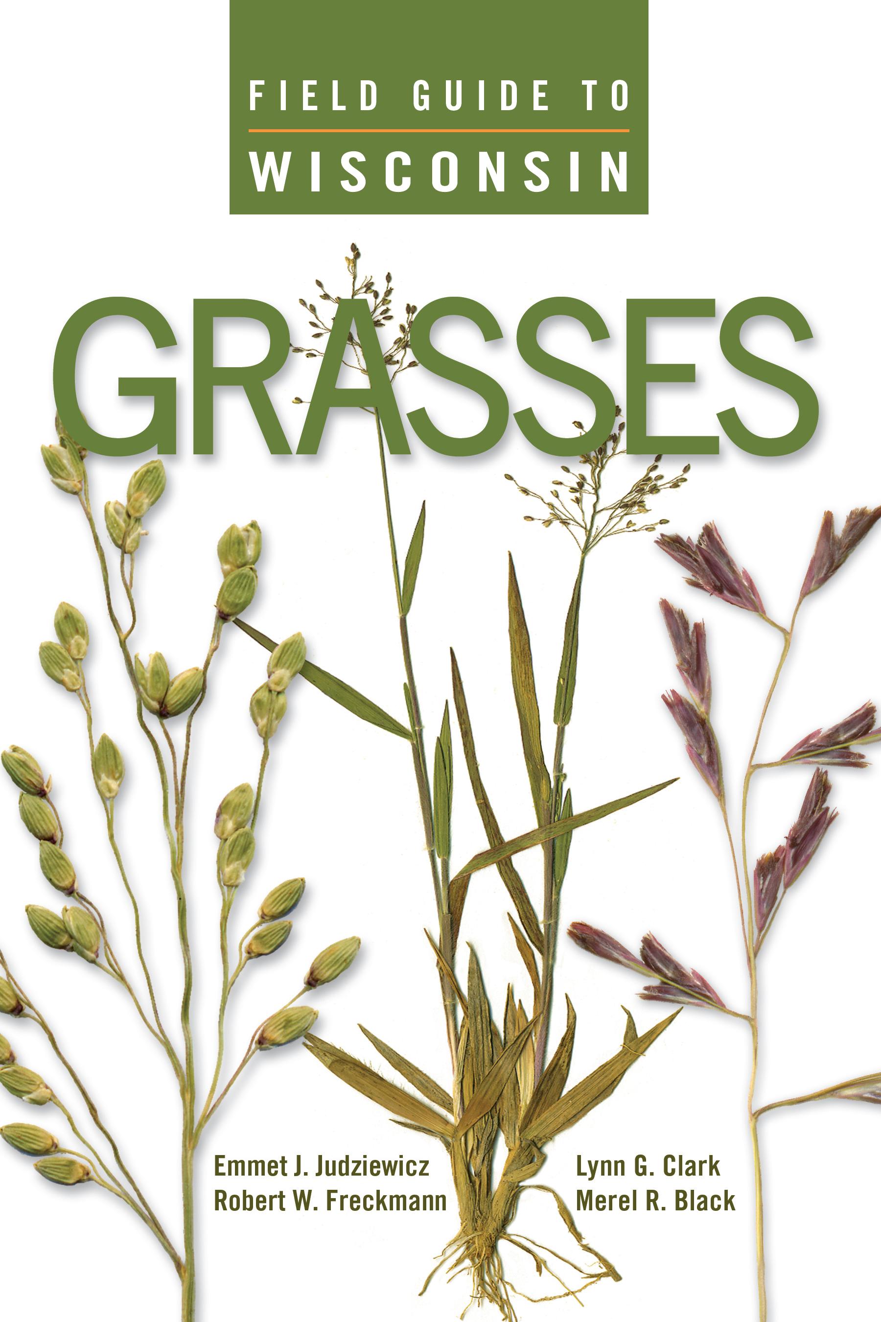 UW Press: Field Guide to Wisconsin Grasses