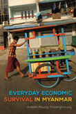 Book Cover: Everyday Economic Survival in Myanmar