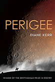 Perigee: Cover showing  a crater mottled celestial body taking up the entire sky, with a dark horizon towards the bottom of the page, upon which the silhouette of a person riding a horse is situated.